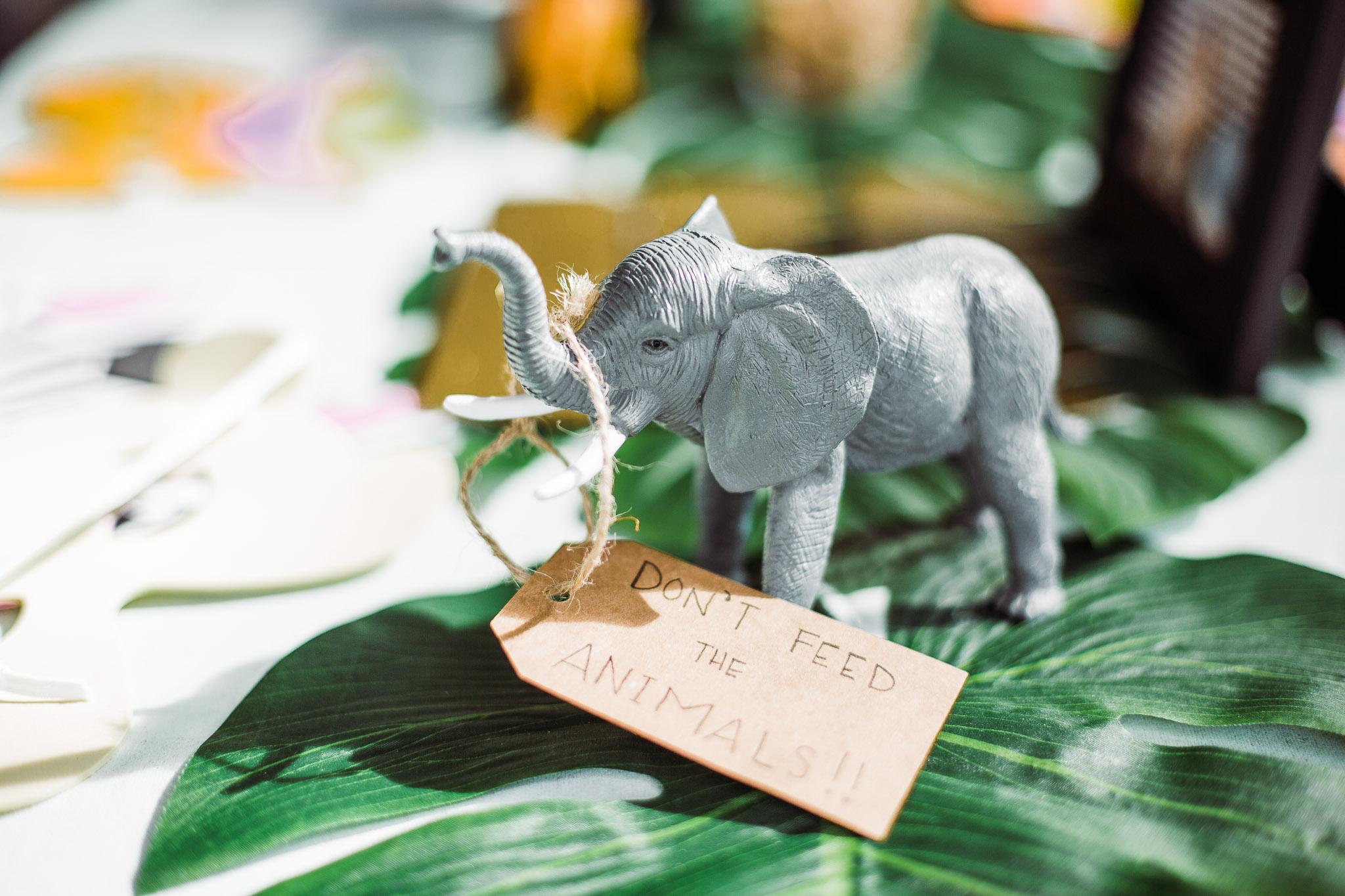 Jungle_safari_fisrt_birthday_party-01-2